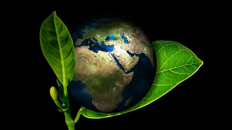CARU Dia Mundial del Medio Ambiente